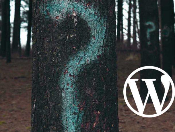 zdjęcie drzew ze znakami zapytania i logo wordpress